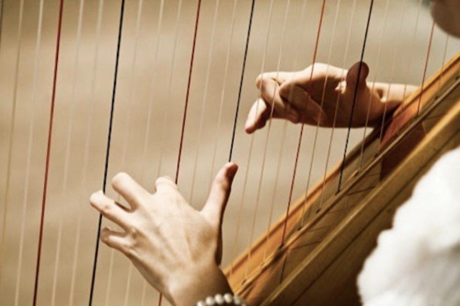 charleston harp player